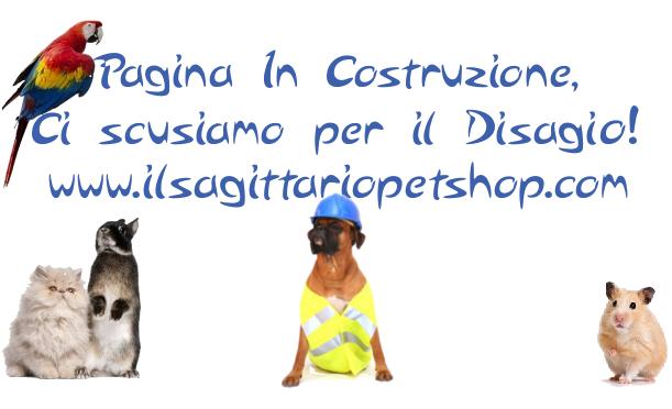 Il Sagittario Pet Shop Under Construction
